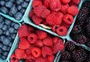 VPR., ODG.: Kdaj lahko jemo sadje in ali je le-to dovoljeno samo dopoldan?